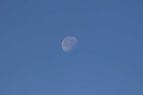 Morning moon @Hella