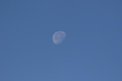 Morning moon @Hella