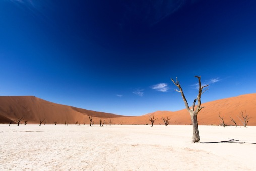Deadvlei magic, Namibia